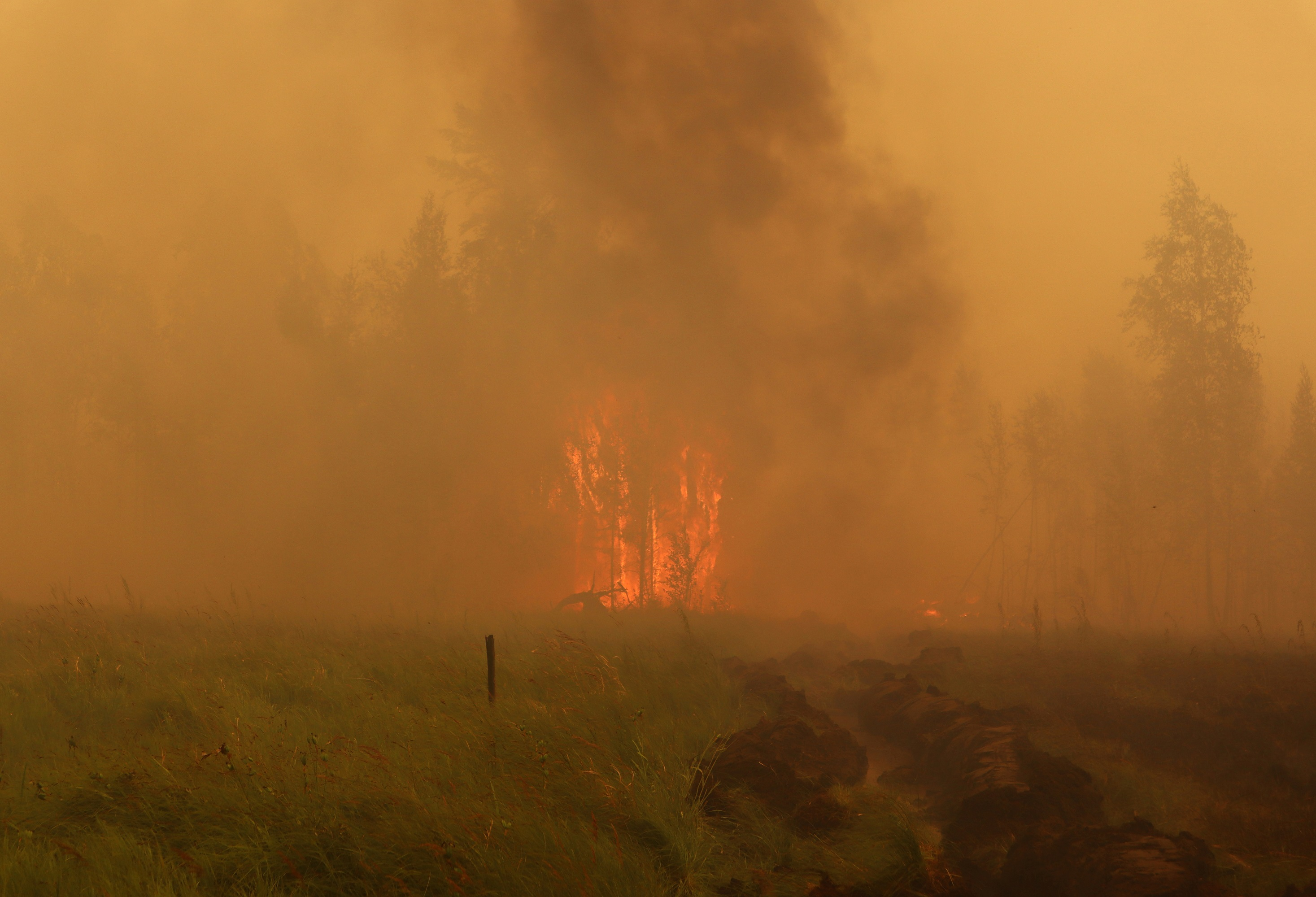 (外代一线)(4)西伯利亚林火肆虐(4877679)-20210720180117.JPG
